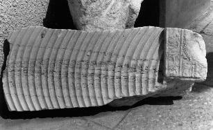 Fig. 1: Caesarea, fragment of a strigilis sarcophagus. a griffon.