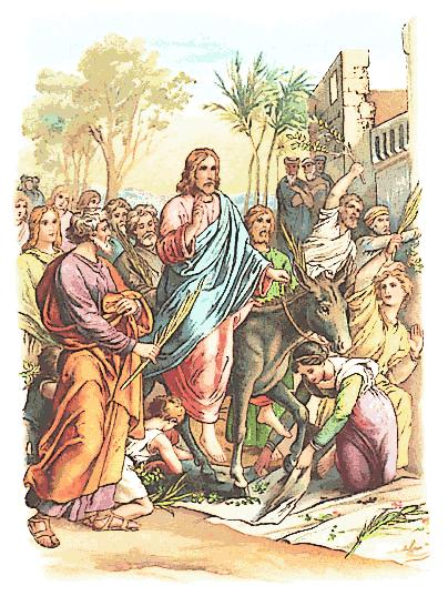 Page 4 6 The disciples went and did as Jesus had directed them; 7 they brought the donkey and the colt, and put their cloaks on them, and he sat on them.