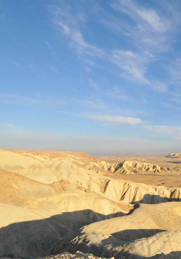 WHY THE NEGEV? David Ben-Gurion believed that the future of Israel would be determined in the Negev, the southern desert region comprising 60 percent of the country.