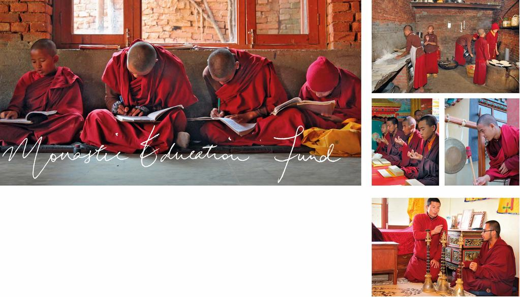 The Monastic Education Fund aims to create a cohesive system to support the proliferation of the sangha, a vital element for the continuing study, practice and preservation of the Buddhadharma.