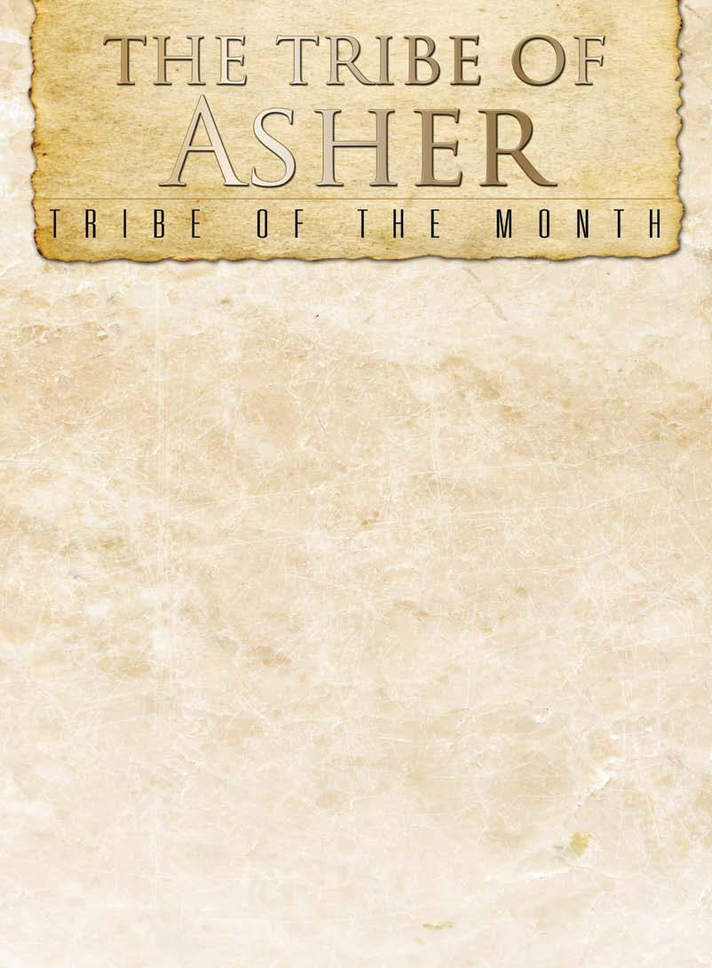 Are you a college student? Maybe a senior citizen? Somewhere in between? The tribe of Asher has a place for you, no matter the age or stage of your life.