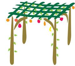 SUKKOT SERVICES AND EVENTS FRIDAY 14 OCTOBER 3.00 pm Sukkah decorating and bake in for Sukkot * *please let the office know if you are coming SUNDAY 16 OCTOBER 6.