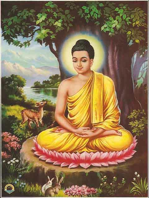 1 st Week After Enlightenment - Under the Bodhi Tree During the first week after enlightenment, the Buddha sat under the bodhi tree experiencing the happiness of freedom and peace.