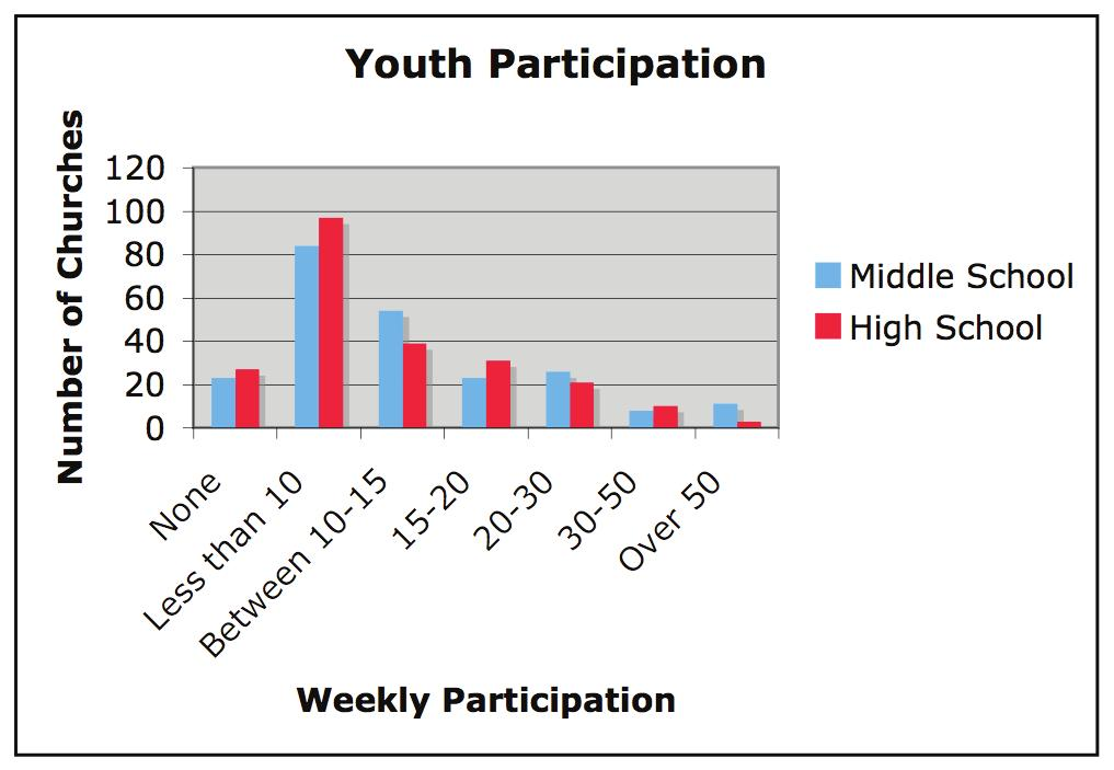 PARTICIPATION OF YOUTH Youth ministry, whether it is in an education class, youth group or a combination of the two, is usually a small population of the congregation.