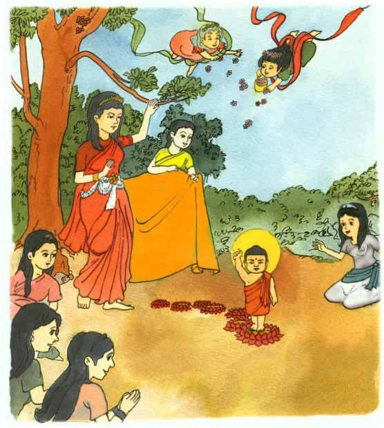 Queen Maya gave birth to Prince Siddhartha in a pretty royal park. It was the full-moon day of May. All the trees were in flower.