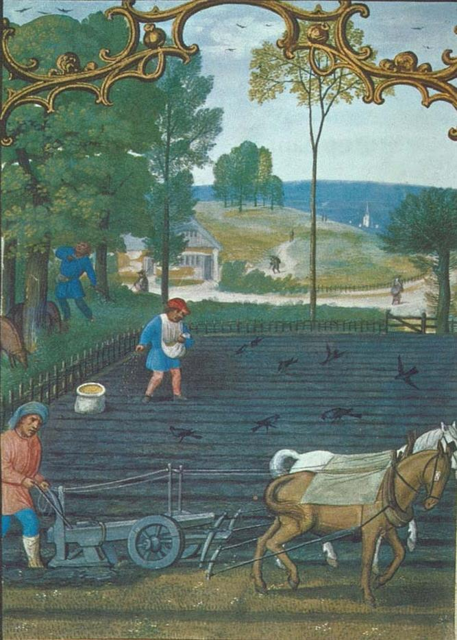 Agricultural Changes in the Middle Ages Serfs adopted new farming techniques to improve agricultural production The