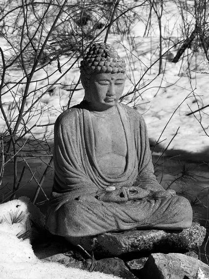 How Did Buddhism Spread?