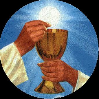 LITURGICAL MINISTRY SCHEDULE Sunday, May 28 8:00 am Lector: Paul Ditter Eucharistic *J. Kruse, J. Peterson, M. Peterson, Minister: M. King, Ushers: E. Clarkson, J.