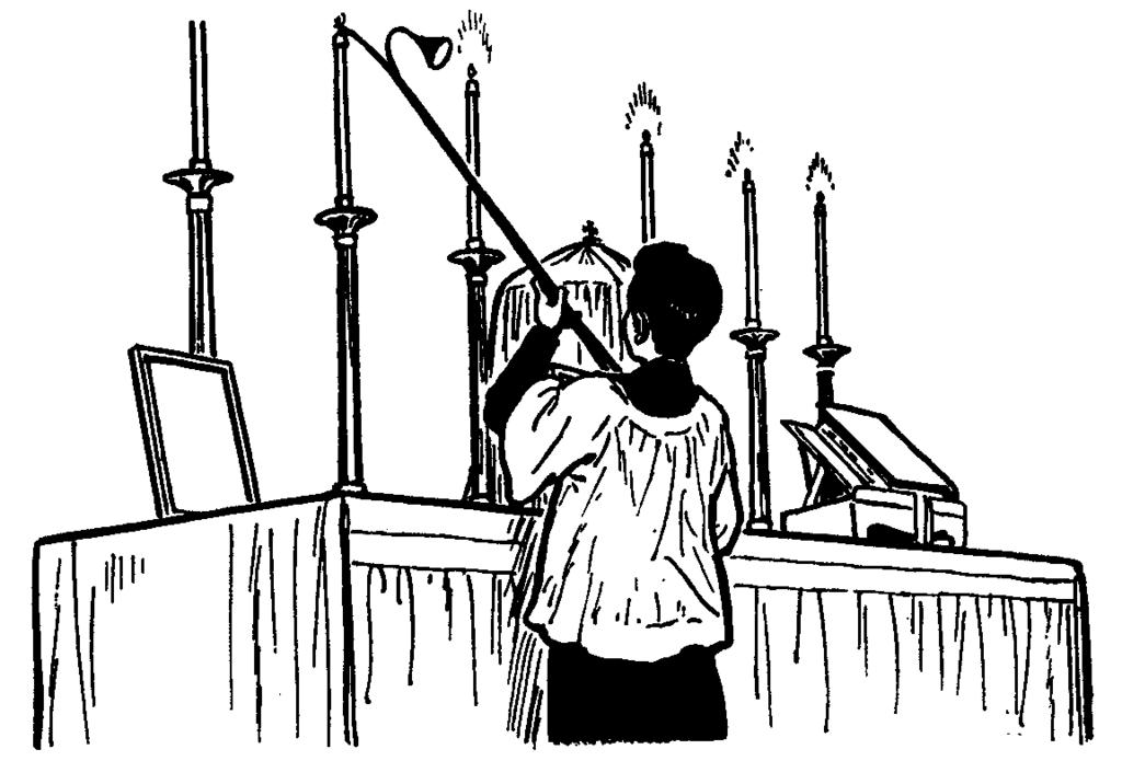 General Requirements for Altar Servers Being an Altar Server is a great honor and a responsibility.