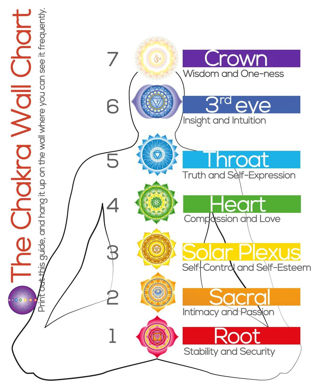 7 The Chakra Map Show