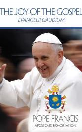 4 The teaching of Pope Francis on the proclamation of the Gospel. He is calling upon the Church and the world with encouragement to begin a new chapter in evangelization. On Nov.