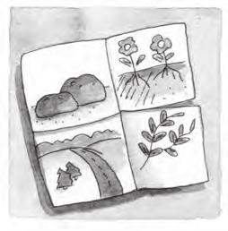 The Parable of the Sower For Extra Time If you have a long class time or want to add additional elements to your lesson, try one of the following activities.