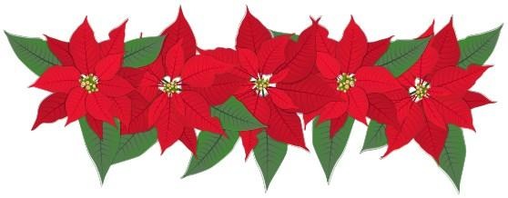 Looking for Poinsettia Plants for the Homebound!