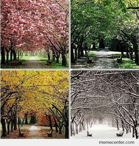 1) What are the four seasons?