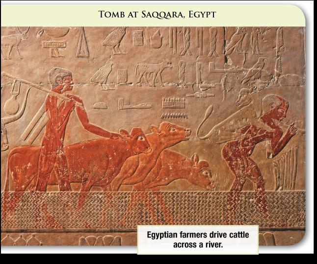 Ancient Environments The Egyptians received fertile soil from the floodwaters of the Nile for farming.