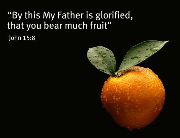 I am the vine, you are the branches. He who abides in Me, and I in him, bears much fruit; for without Me you can do nothing.