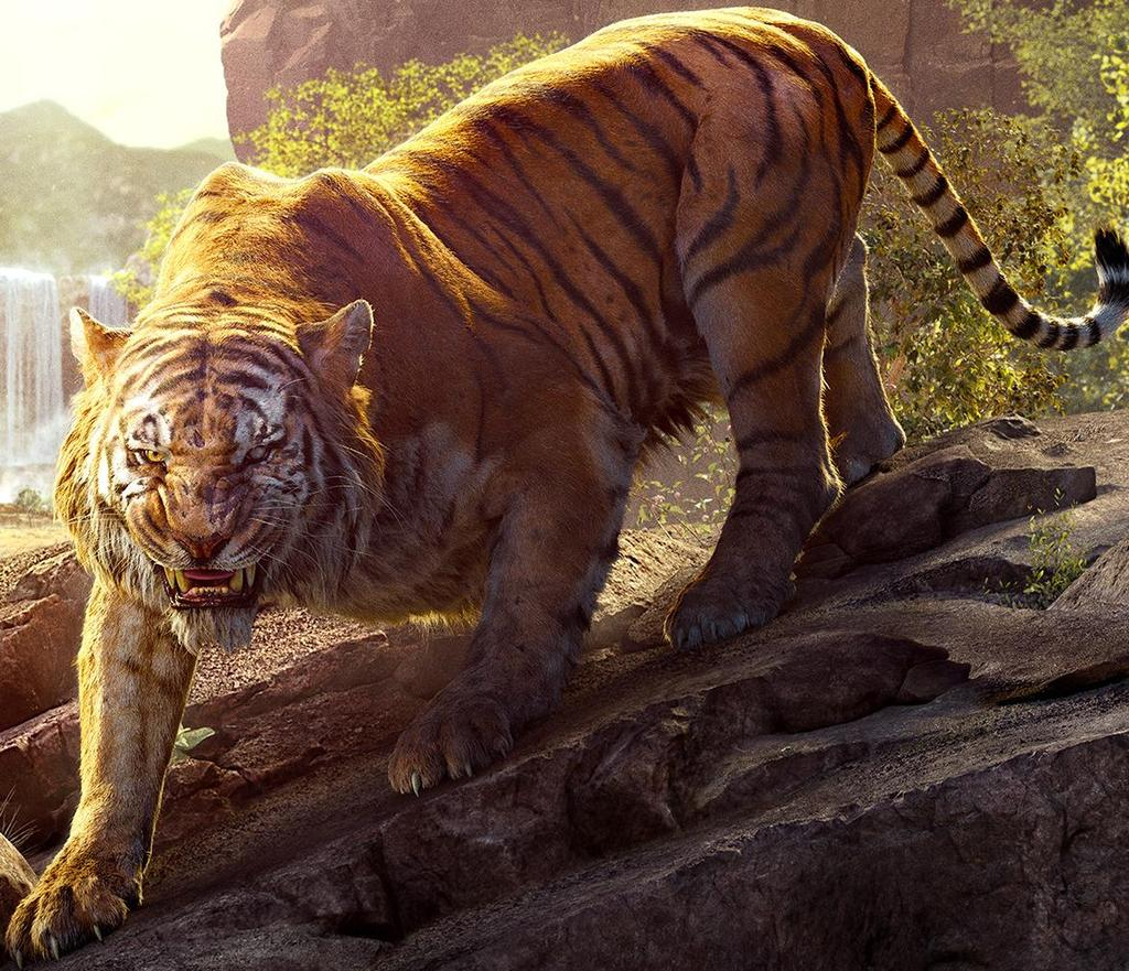 Classic India The Bengal Tiger The National Animal of