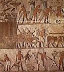 Sumerian Economy Most Sumerians earned a living in one of the following