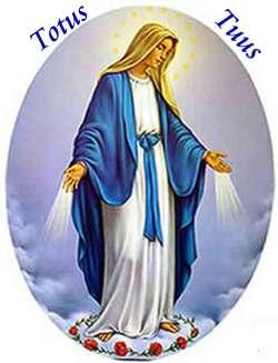 O Mary, conceived without sin, pray for us who