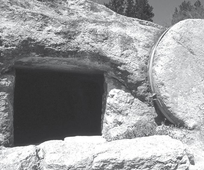 THE POINT The empty tomb points to the faithfulness of God. LIVE IT OUT LIVE IT OUT How will you respond to the faithfulness of God this week?