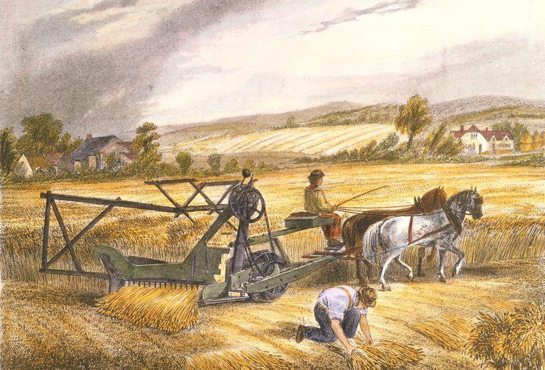 steel plow enabled farmers to replace oxen w/ horses Cyrus