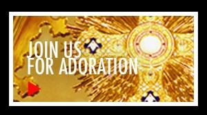 Our Lady Comforter of the Afflicted Parish Waltham/Lexington OUR LADY S ACADEMY Conferences/Adoration/Confessions with Fr.