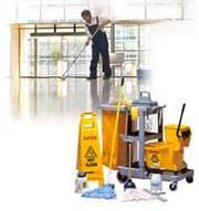bulbs; setting up classrooms, banquet hall, and other areas for events; cleaning and disinfecting drinking fountains.