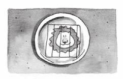 Lesson 12 n Option 3: Lion in a Cage SUPPLIES: small paper plates, markers, scissors, black construction paper, stapler Set out paper plates, scissors, markers, black construction paper, and a