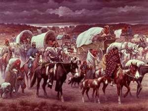 45. Trail of Tears 48. Worcester v. Georgia (AJ), The Cherokee Indians were forced to leave their lands.