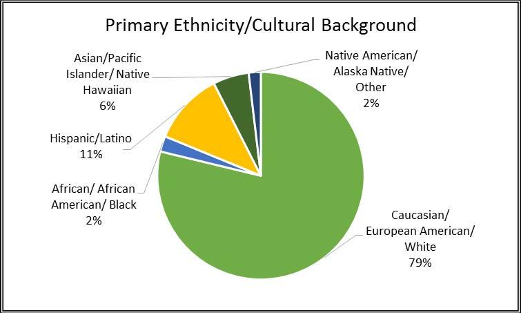 Primary Ethnicity/Cultural Background Four in five responding priests and seminarians identify their primary ethnicity or cultural background as Caucasian/European American/white.