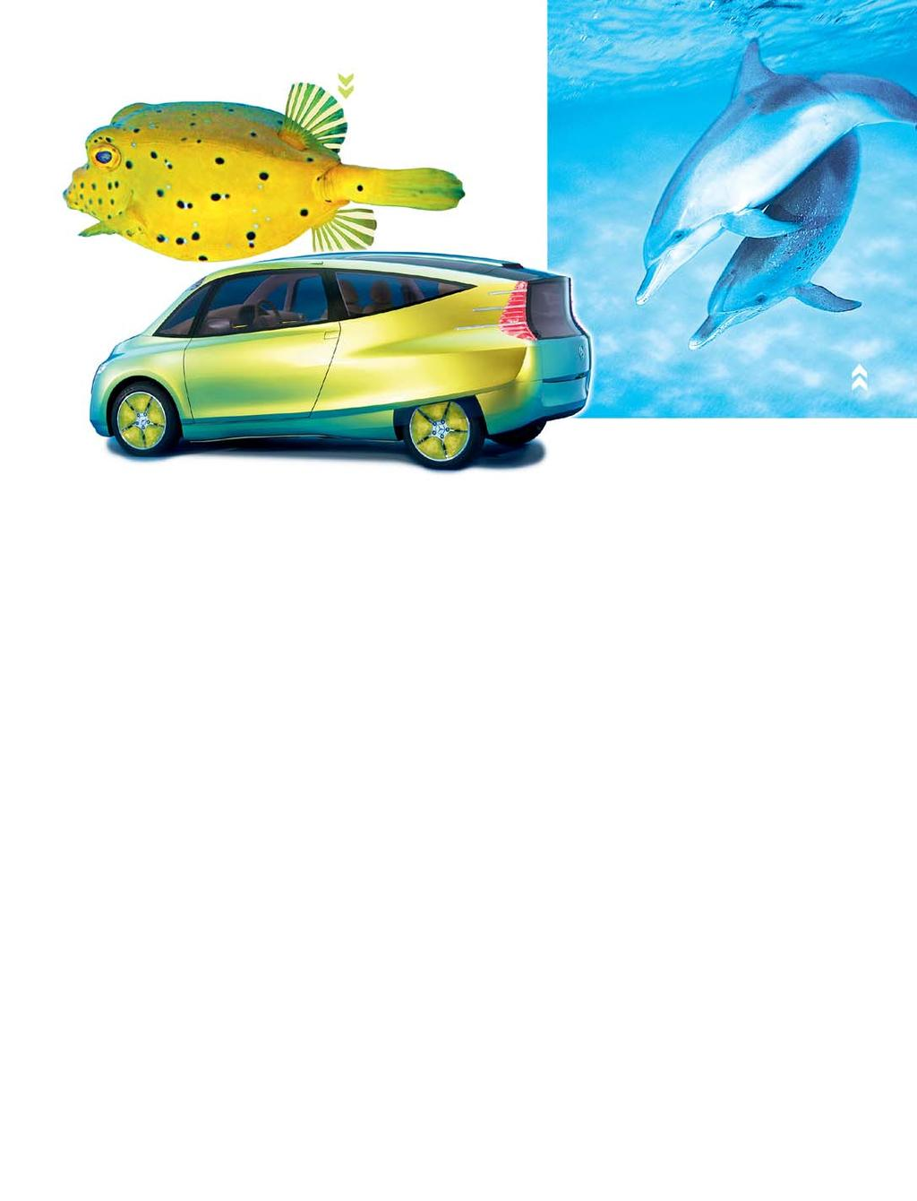 A concept car imitates the surprisingly low-drag and stable design of the boxfish Sonar in dolphins is superior to the human imitation Who deserves the credit?