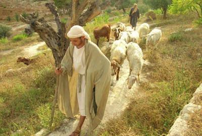Walking Free DAY 6 - Wednesday, Sep. 5 Bethlehem & Regions Herod, Angels, Shepherds. Focus on Places and the People who witnessed the Jewish Messiah.