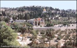 Mt. Of Olives, Garden of Gethsemane Day 8, (Monday), May 13, 2019 Today we ll see so many wonderful sites & places from the Bible stories we have learned about since childhood.
