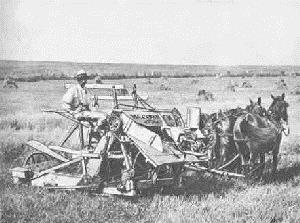 Midwest Farming Cyrus McCormick invented mechanical reaper Enabled 1 farmer