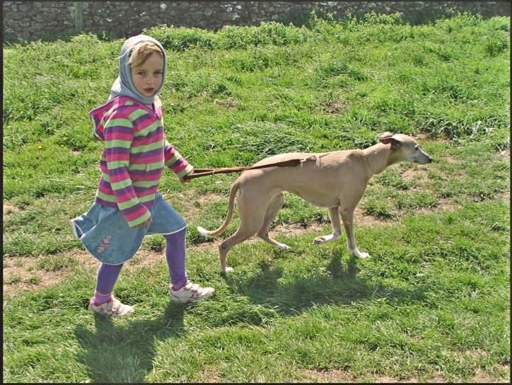 More of the Children s responses... Sian (aged 5). Meeting my friends and seeing Daisy (the whippet).
