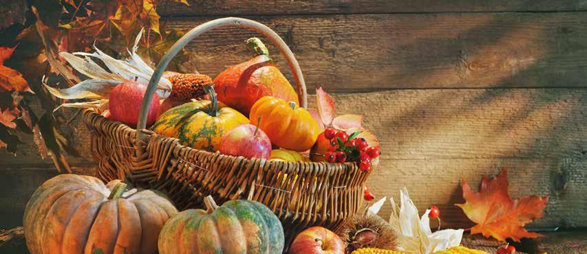 Thanksgiving Bible Verses Bible Verses for Thanksgiving - Be encouraged with Scripture on why we should give thanks and how to express our gratitude.