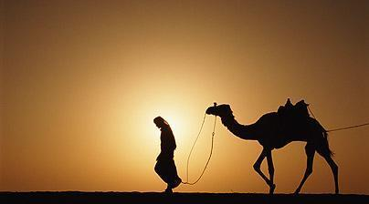 2. Arabian Peninsula s Humans ARABS a.