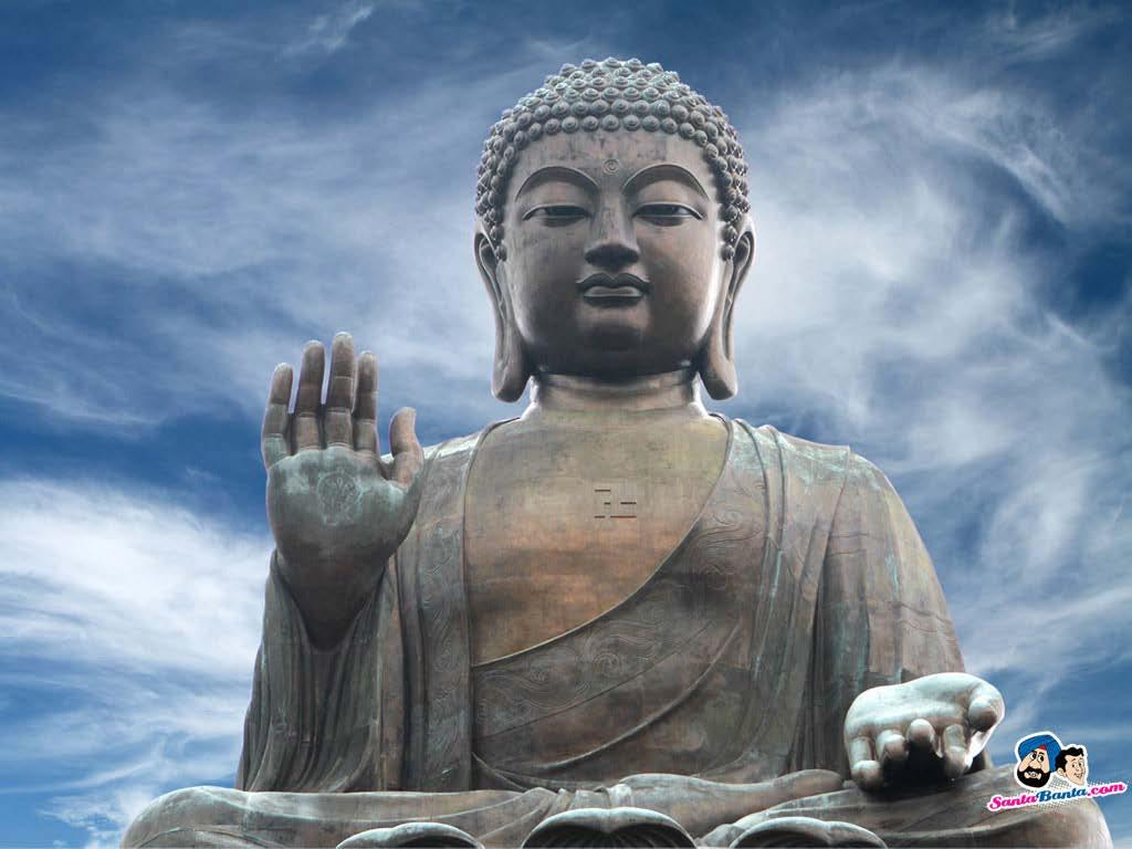 What is the Buddha? *Means awakened one.