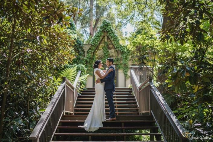 Get to know about pre wedding ceremony photo shoot If talking about wedding day and pre wedding ceremonies photo shoot then it is a conception which includes a photo shoot that is set before the