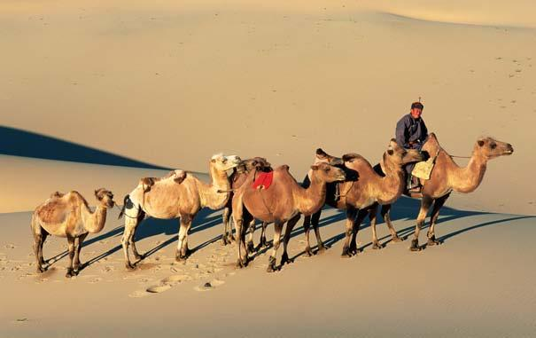 They obtained camels and set off toward the East. For much of their journey, they followed the Silk Road.