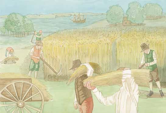 Because of the climate and soil, wheat grew well in the Middle Colonies. Winters in the Middle Colonies were not as long and cold as the winters in New England.
