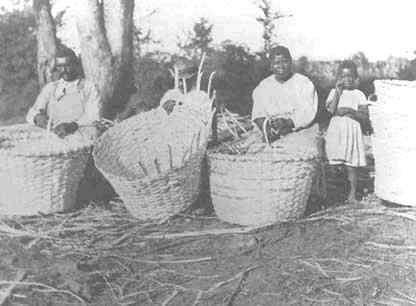 Enslaved Africans brought with them the arts and crafts skills of