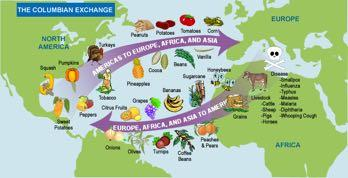 The Columbian Exchange Columbian Exchange The refers to the movement of peoples, cultures, technologies, plants, animals, diseases and other things between Europe and North America after Columbus s